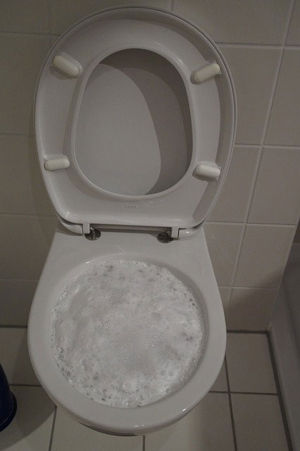 A plumbing emergency - Toilet Problems