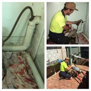 Mainline Plumbing in action